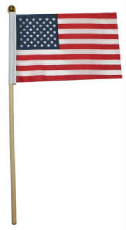 "10"" Plastic USA Flags"